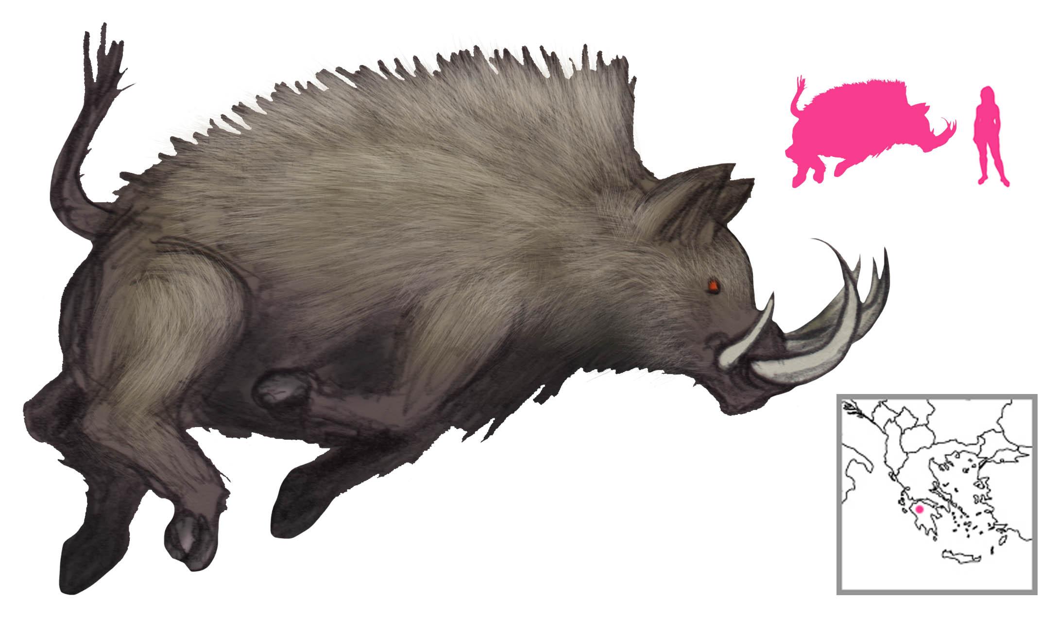 Erymanthian Boar